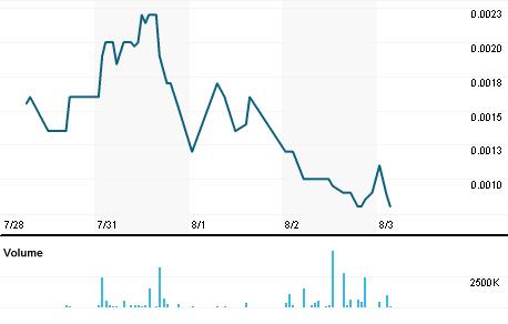 Chart for BRGO.PK